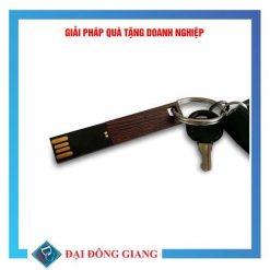 USB thiết kế riêng bằng gỗ cao cấp